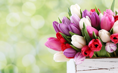 Fun Facts You Didn't Know About Mother's Day