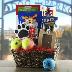Bark Buster - Dog Gift Basket