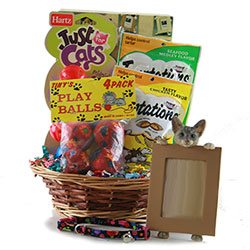 Cat Got Your Tongue Dog Cat Pet Gift Baskets