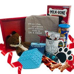 Dog Days Dog Gift Basket