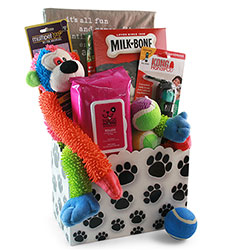 It's a Dogs Life - Dog Gift Basket