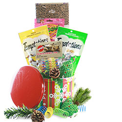 Kitty Christmas  - Christmas Gift Basket