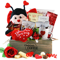 Love Bug Valentines Day Gift Basket