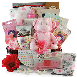 Pretty in Pink - Baby Gift Basket