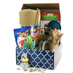 Ruff Day - Dog Gift Basket