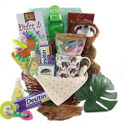 Hangin with Mommy - Baby Gift Basket
