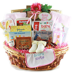 Sophisticated Baby - New Baby Gift Basket