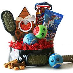 Spoiled Rotten - Dog Gift Basket