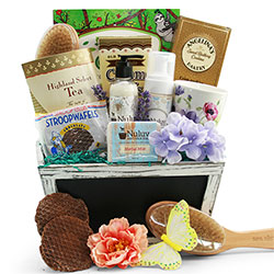 Get well gift baskets get well soon baskets for men women diygb stress buster spa gift basket negle Choice Image