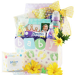 Tiny Traveler - Baby Gift Basket