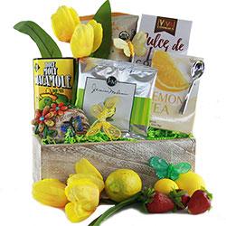 Tip Toe Through the Tulips Gardening Gift