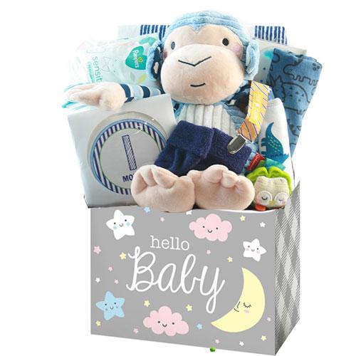 Sm Baby Gift Basket BABYBX