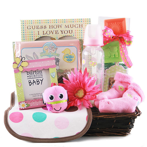 Bouncin Baby Girl Baby Gift Basket