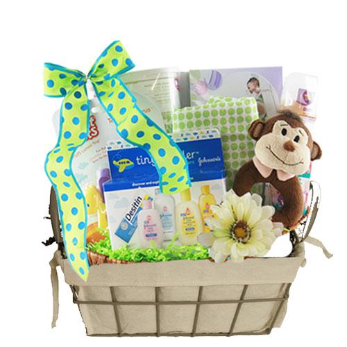 Sm Baby Gift Basket BP1012