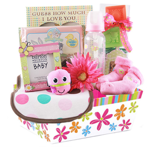 Sm Baby Gift Basket BP1014