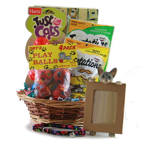 Cat Got Your Tongue Pet Gift Basket Cat