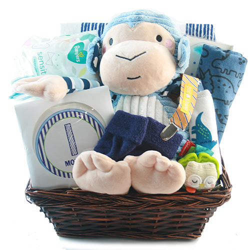 Little Monkey Baby Boy Gift Basket