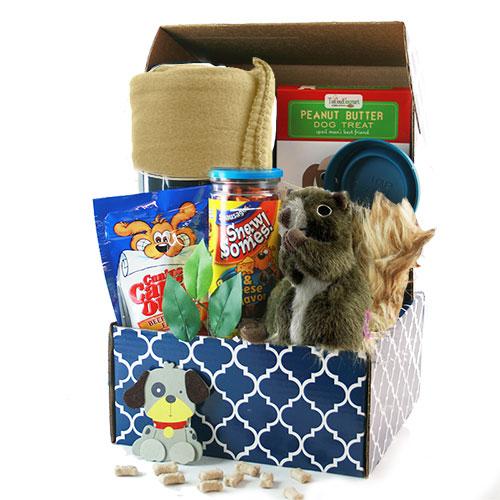 Ruff Day Pet Gift Basket Dog